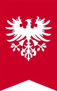 Flaga Powstańców Wielkopolskich