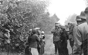Pacyfikacja Boru Kunowskiego-1