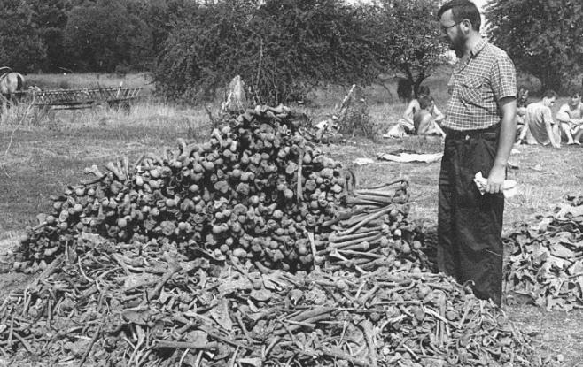 Zbrodnia w Ostrówkach - ekshumacje